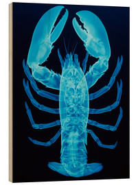 Wood print  X-ray of lobster - D. Roberts