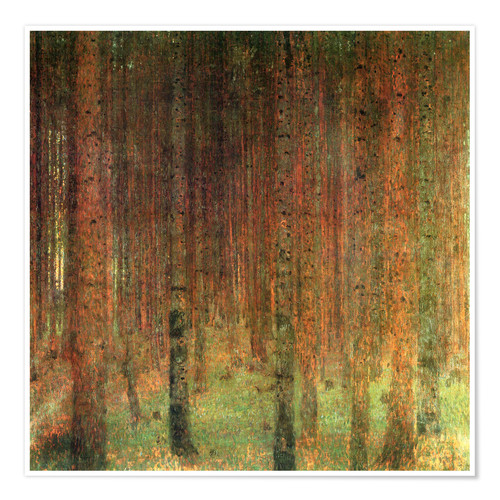 Poster pine forest ii