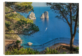 Wood  Faraglioni rocks at Capri (Italy) - Christian Müringer
