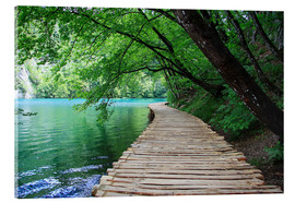 Acrylic print  Plitvice Lakes National Park Boardwalk - Renate Knapp Waldundwiesenfee