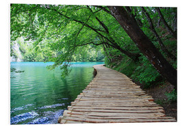 Forex  Plitvice Lakes National Park Boardwalk - Renate Knapp Waldundwiesenfee