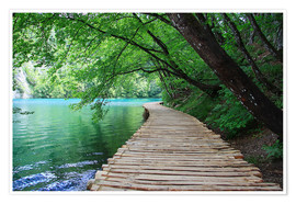 Premium poster Plitvice Lakes National Park Boardwalk