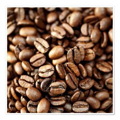 Premium poster roasted coffee beans