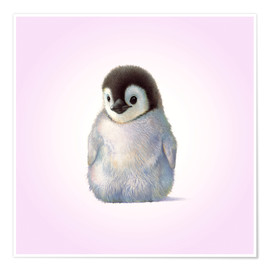 Poster Penguin Chick