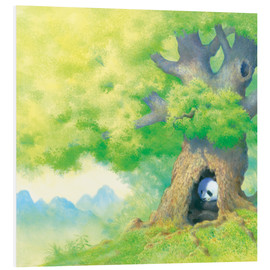 Foam board print  Panda In tree - John Butler