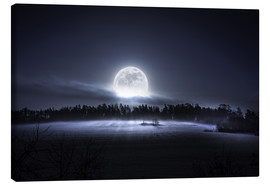 Canvas print  The moon is rising - HappyMelvin