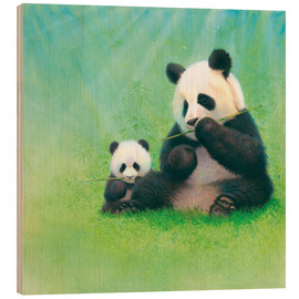 Wood print  Panda, baby and bamboo - John Butler