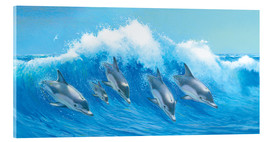 Acrylic glass  Leaping Dolphins - John Butler