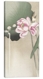 Canvas print  Lotus Flower and Finch - Ohara Koson