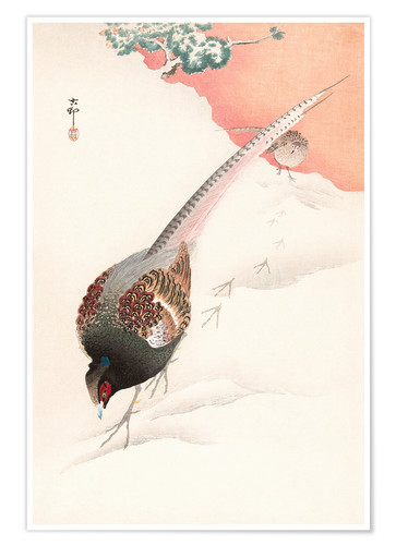 Premium poster A Pair of Pheasants in the Snow