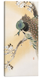 Canvas print  A peacock in a cherry tree crown - Ohara Koson