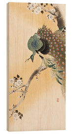 Wood print  A peacock in a cherry tree crown - Ohara Koson