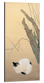 Aluminium print  Cat and Plum Blossoms - Hishida Shunso