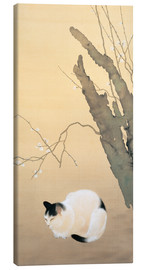 Canvas print  Cat and Plum Blossoms - Hishida Shunso