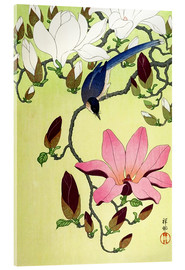 Acrylic print  Magpie with Pink and White Magnolia Blossoms - Ohara Koson