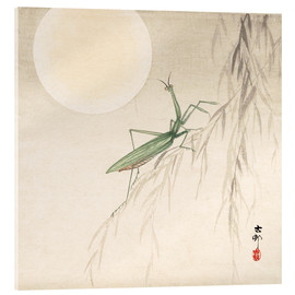 Acrylic print  praying mantis on willow branch, a full moon above - Ohara Koson