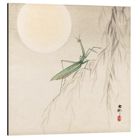 Aluminium print  praying mantis on willow branch, a full moon above - Ohara Koson