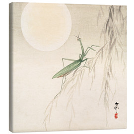 Canvas print  praying mantis on willow branch, a full moon above - Ohara Koson