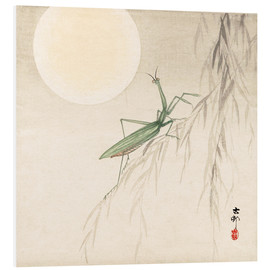 Forex  praying mantis on willow branch, a full moon above - Ohara Koson