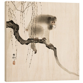 Wood print  Japanese macaque on a tree - Ohara Koson