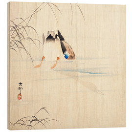 Wood print  Diving Mallard - Ohara Koson