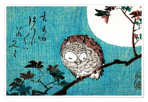 Premium poster Sleeping owl full moon
