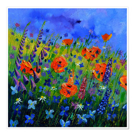 Poster Flower meadow
