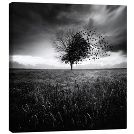 Canvas print  Illusion of a lost springtime - Sébastien DEL GROSSO