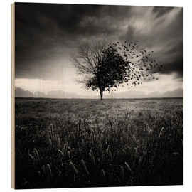 Wood print  Illusion of a lost springtime - Sébastien DEL GROSSO