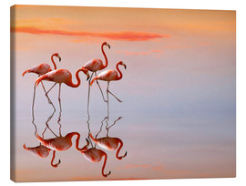 Canvas  Flamingos in the mirror - Anna Cseresnjes