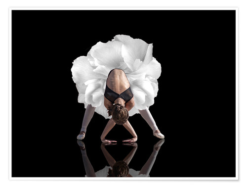 Premium poster Dancing figure - white rose