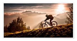 Poster Golden hour biking