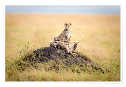Premium poster Leopard mother