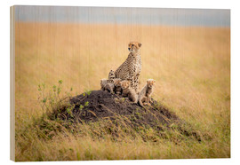 Wood print  Leopard mother - Ted Taylor