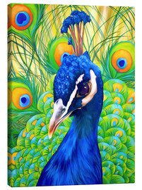 Canvas print  peacock - Renate Berghaus