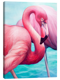 Canvas print  Flamingo - Renate Berghaus
