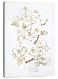 Canvas print  Apple blossom - Charles Rennie Mackintosh