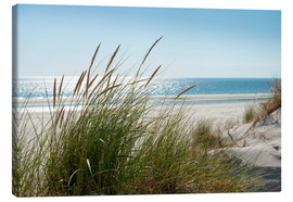 Canvas print  Dune with fine marram grass - Reiner Würz