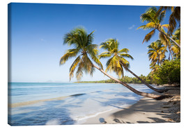 Canvas print  Les Salines tropical beach, Martinique, Caribbean - Matteo Colombo