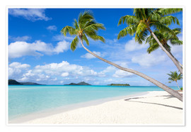 Premium poster White beach with palm trees, Tahiti, French Polynesia