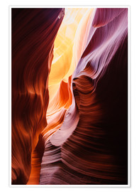 Premium poster Glowing walls of Lower Antelope Slot Canyon at Page, Arizona, USA