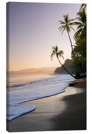 Canvas print  Surf at a palm beach, Costa Rica - Matteo Colombo