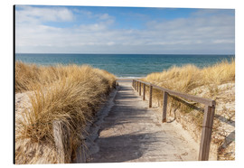 Alu-Dibond  Way to the beach on the Baltic Sea - Christian Müringer