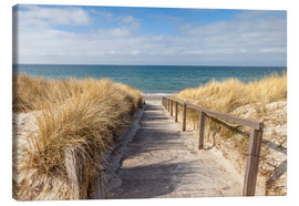 Canvas print  Way to the beach on the Baltic Sea - Christian Müringer