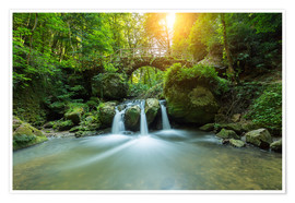 Premium poster romantic waterfall
