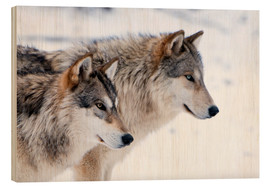 Wood print  Two Wolves in the snow - Louise Murray