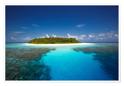 Tropical Island, Maldives Posters And Prints