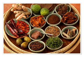 Poster  Spices from the Thai cuisine - Luca Tettoni
