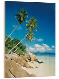 Wood  Anse Severe With Praslin Island in Background, La Digue, Seychelles - Lee Frost