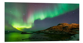 Forex  Northern Lights near Tromso - Louise Murray